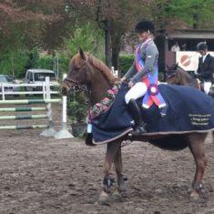 Kampioenschap Pony's 2010